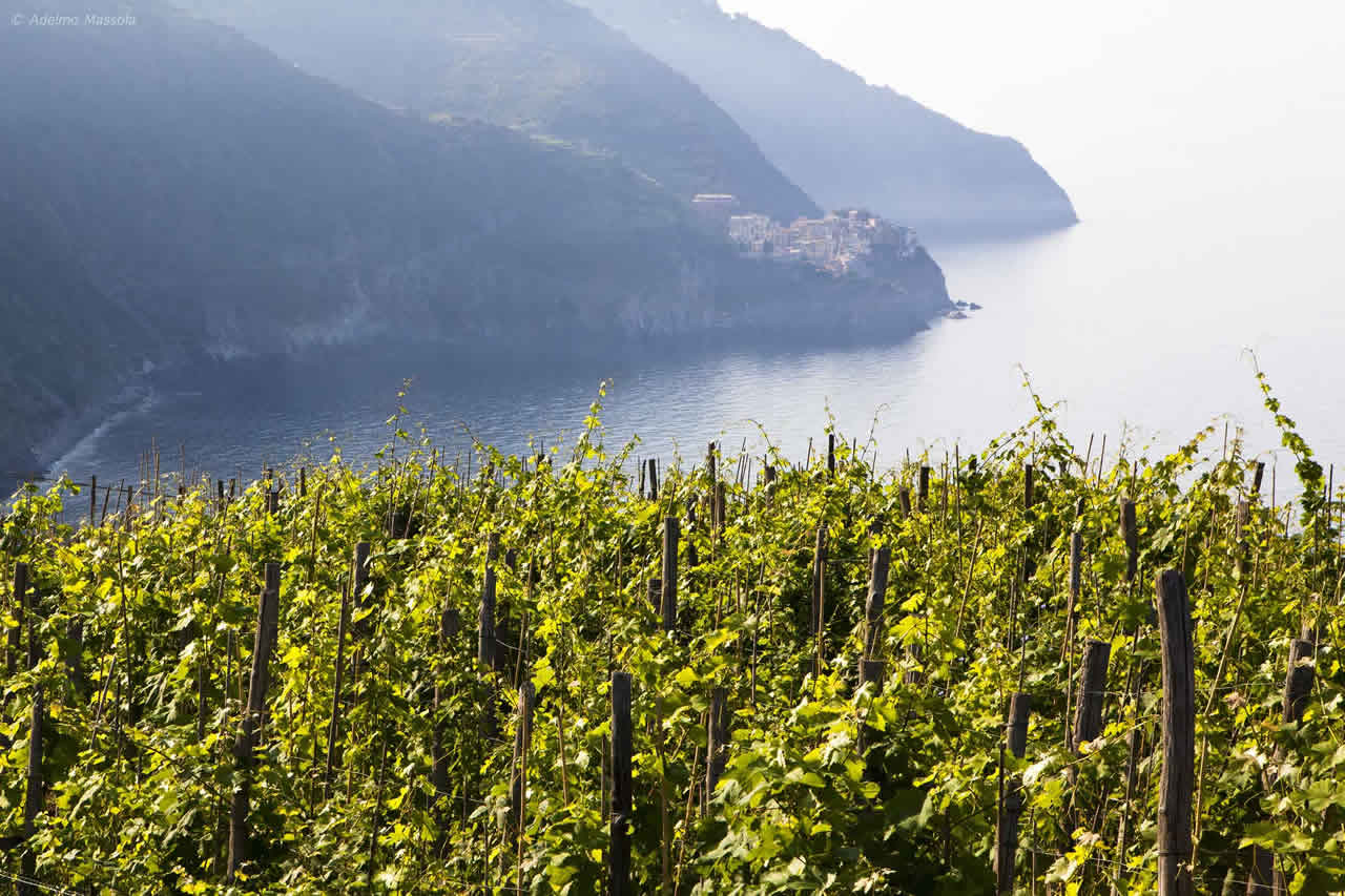 Tuscany meets Cinque Terre accommodation package