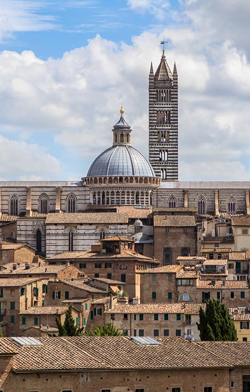 Follonico experience the city of Siena